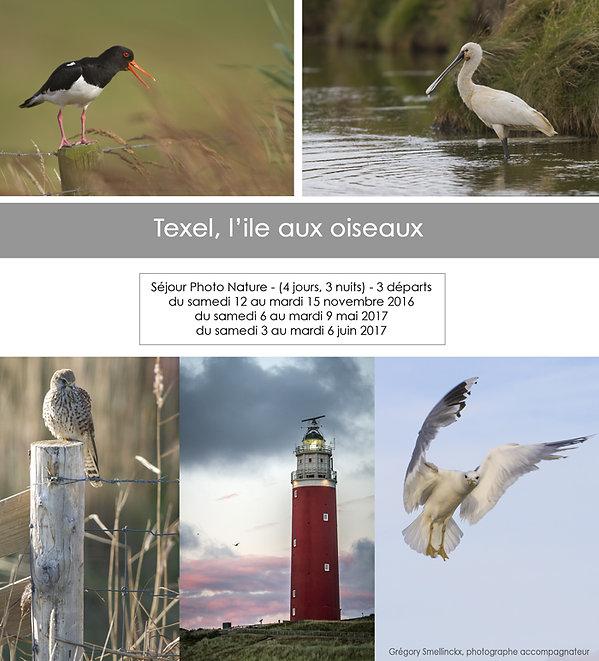 Séjour et voyage photo nature ile de texel pays-bas