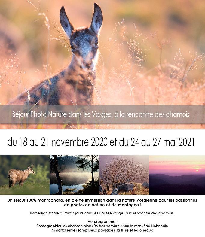 Pub Vosges web.jpg