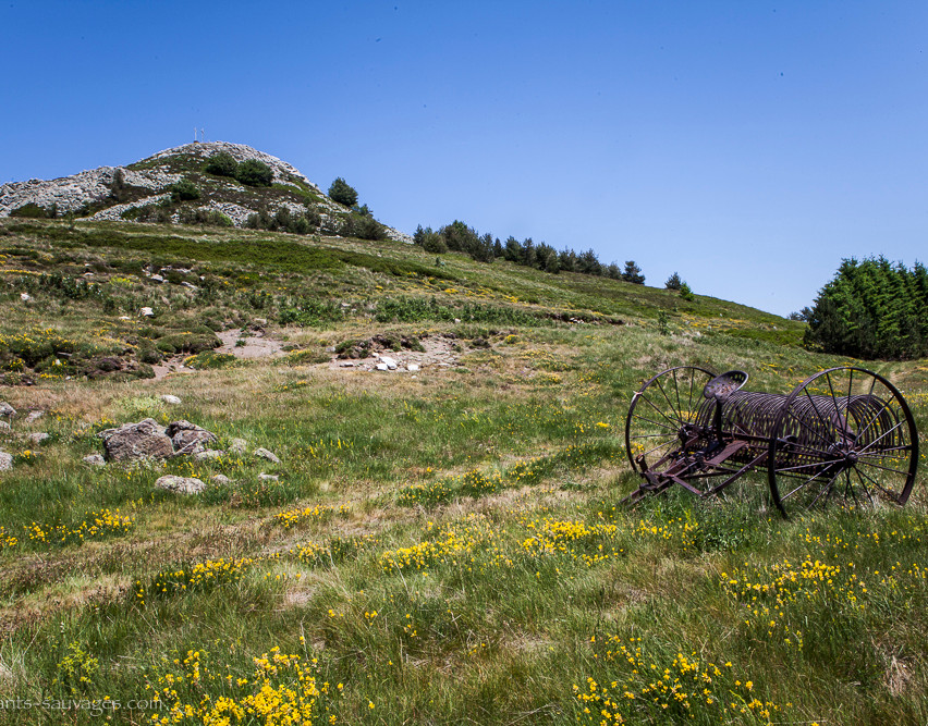 015_Ardèche