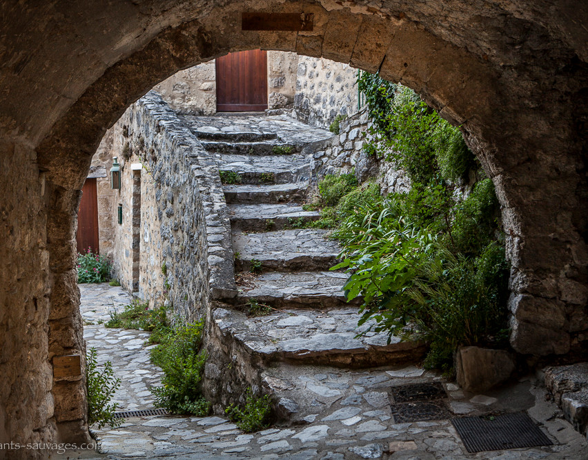 003_Village_de_St_May-Drôme