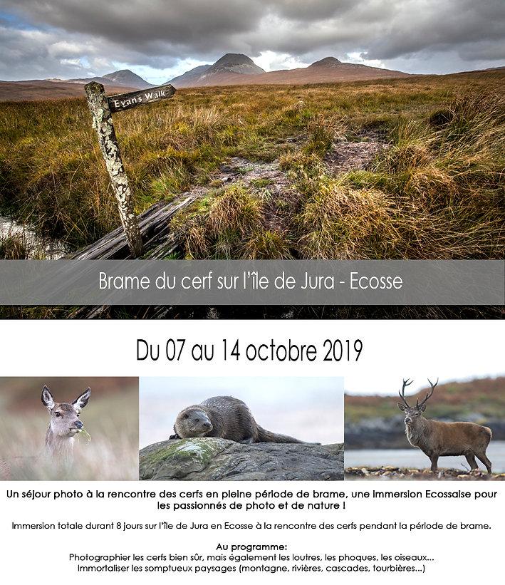 Sejour photo nature sur l'île de Jura en Ecosse