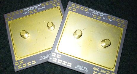 Gold Cap Computer Chis