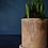Thumbnail: Small spring bulb pot