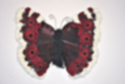 Red_admiral_butterfly_tribute.jpg