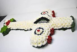 RAF plane tribute.jpg