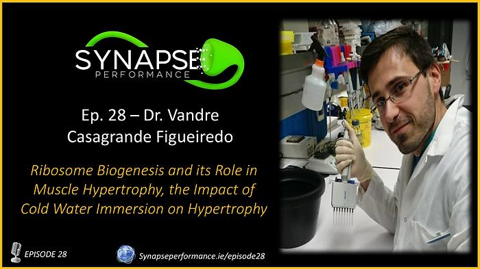 Dr. Vandre Casagrande Figueiredo