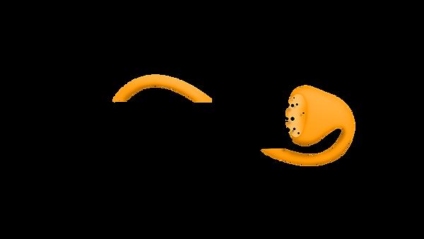 Orange-Black-OVERLAY (1).png