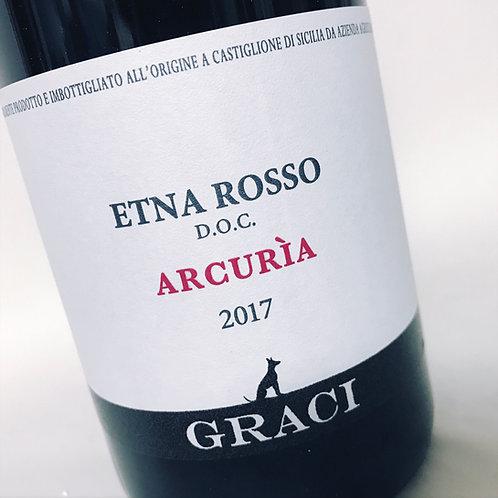 Graci Arcuria 2017
