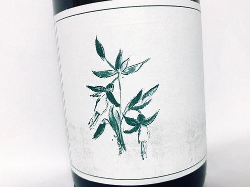 Arnot Roberts Sandford & Benedict Chardonnay 18
