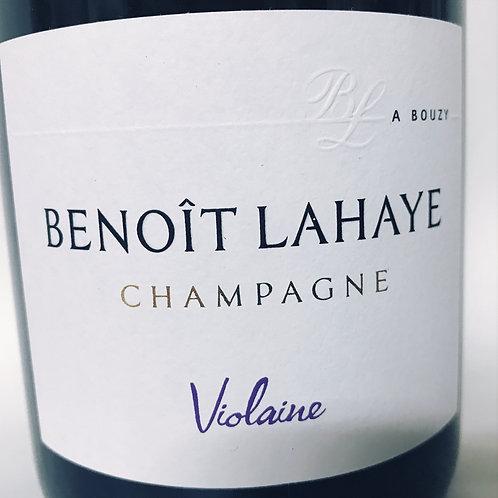 Benoit Lahaye Violaine