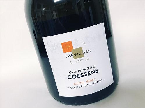 Coessens Caresse d´automme