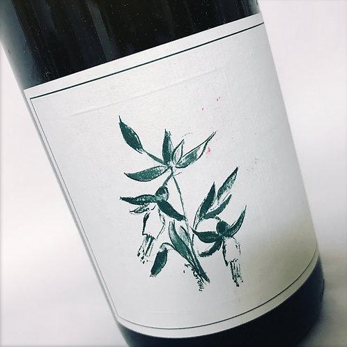 Arnot Roberts Watson Ranch Chardonnay 17