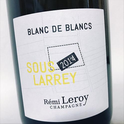 Remy Leroy Sous Larrey 14