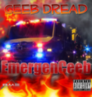 emergenceebcover_edited.png