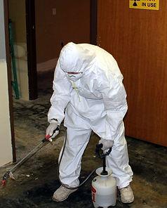 Biohazard-903x1024.jpg