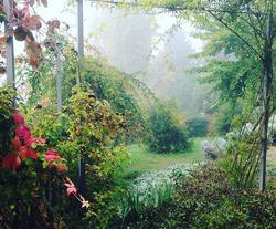 Fascino dell'autunno