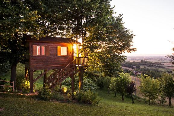 Aroma(n)tica - Casa sull'albero da € 140