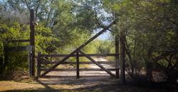 Rincon Creek Ranch About