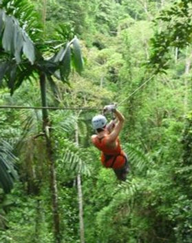 -_Terraventuras_Jungle_Exp-2000000000584