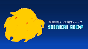 Shinkai Shop