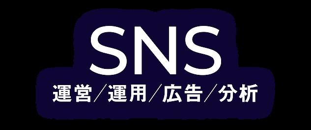 SNS 運営/運用/広告/分析