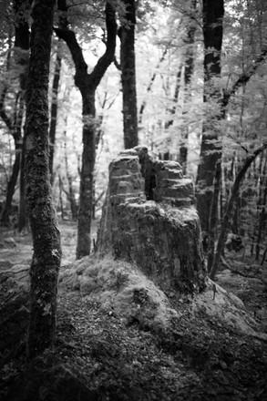 Ancient throne.jpg