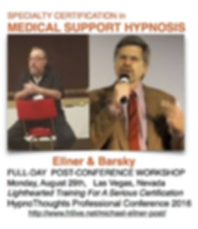ellner barsky medical support poster.jpg