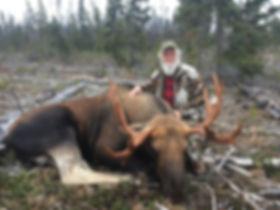 Moose2018.jpg