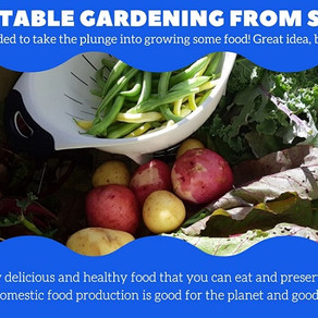 Vegetable gardening from seed