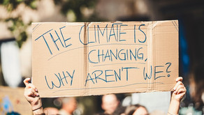 Climate grief and anxiety by Martin Bush