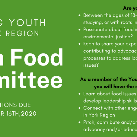 Calling Youth to form a Youth Food Committee in York Region