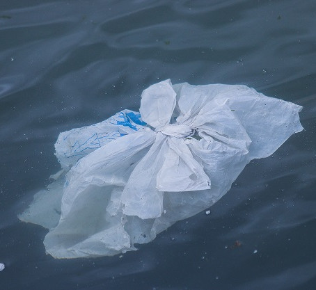 Microplastics Found In The Ocean And In Human Poop