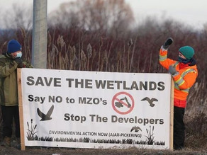 Duffins Creek wetlands vs. a warehouse: Resisting Doug Ford's assault on communities & environment