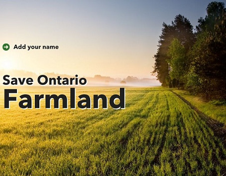 Save Ontario's farmland