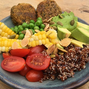 Plant Protein Bowl