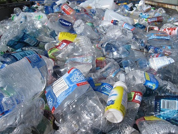 What really happens to plastic drink bottles you toss in your recycling bin
