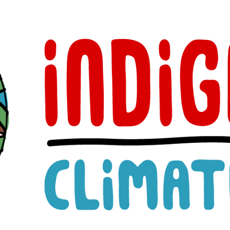 Indigenous Climate Action has a job opening for a Audio/Video Editor