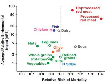 Multiple health and environmental impacts of foods