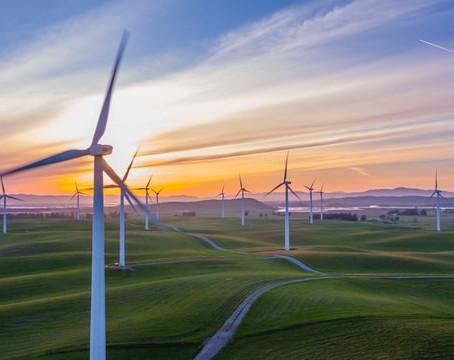 Egan: Judges blow away minister's order, $200-million wind farm restarts