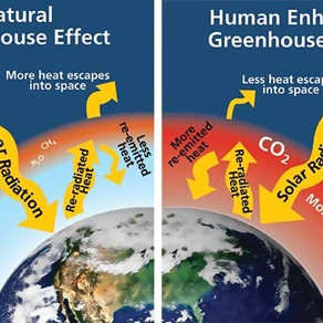 NftP Climate Change Brochure