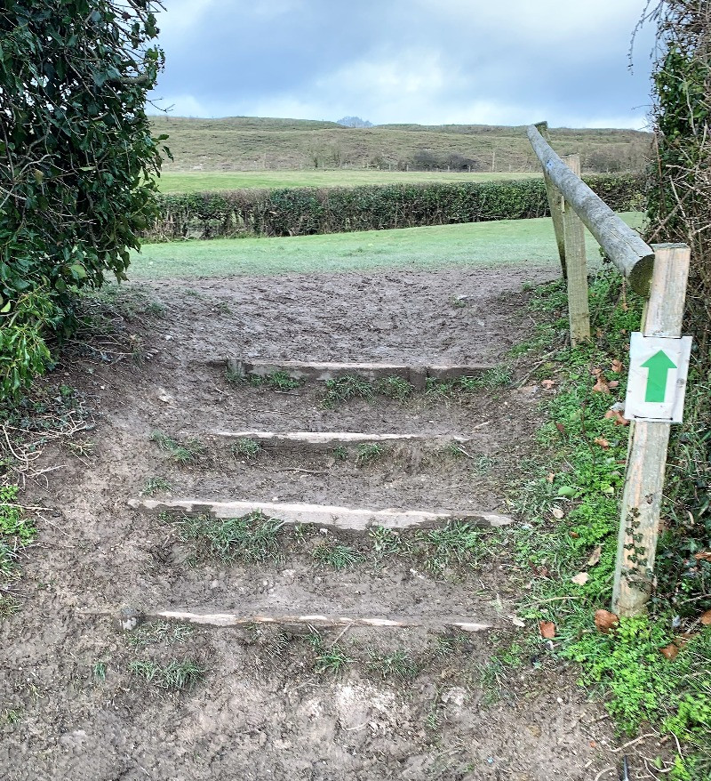 A set of muddy steps leading to a field