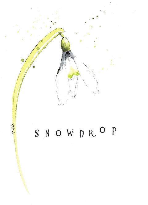 Snowdrop Greetings Card