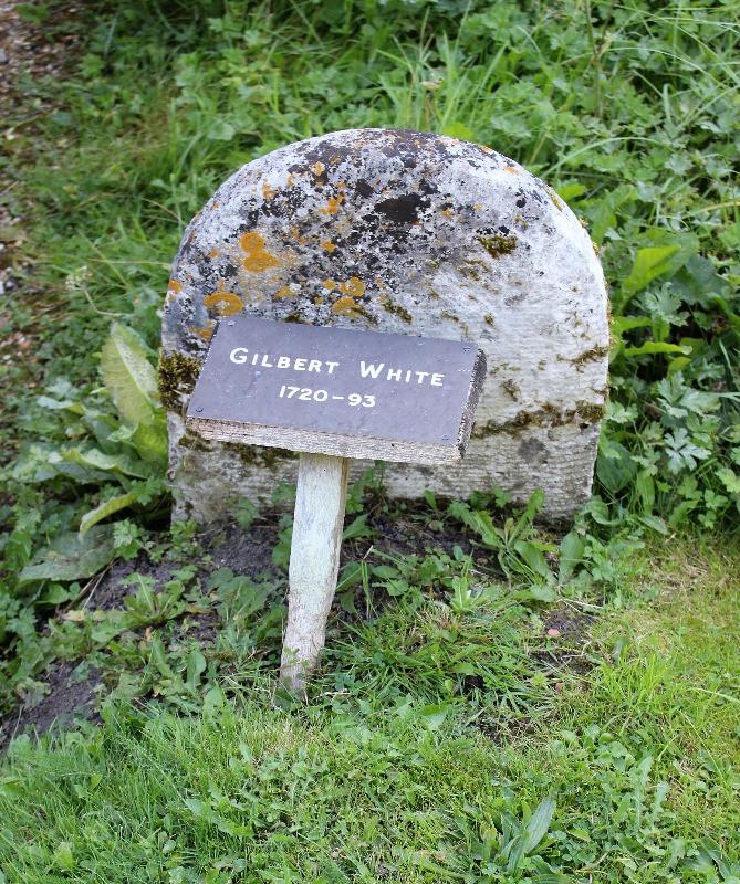Gilbert White's gravestone
