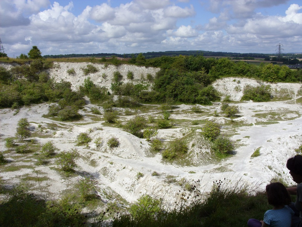 The chalk pits in the sunshine