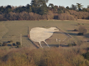THE BULFORD KIWI: A WALK WITH GREAT VIEWS, HISTORICAL INTEREST AND PERHAPS SOME RIFLE FIRE!
