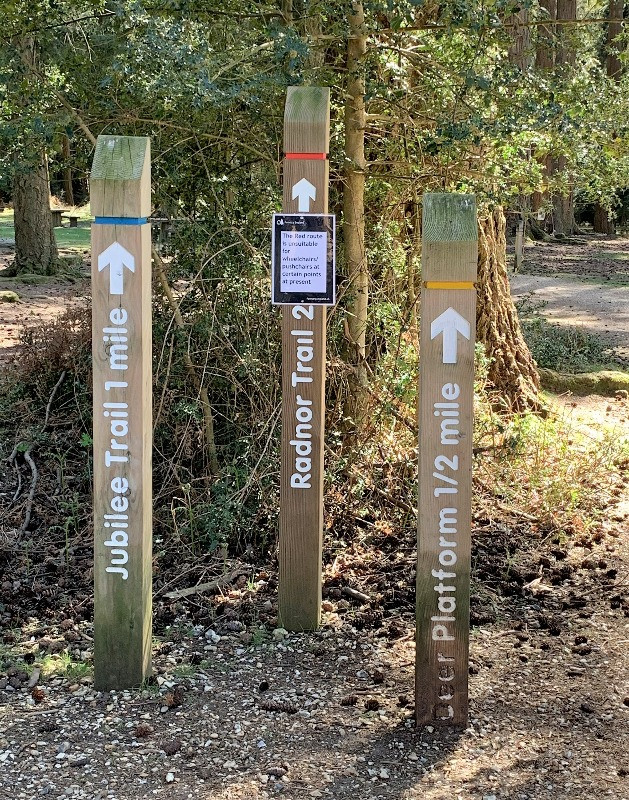 Wooden posts with walking trails on