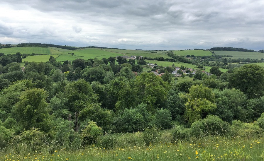 Lower Woodford Valley from above