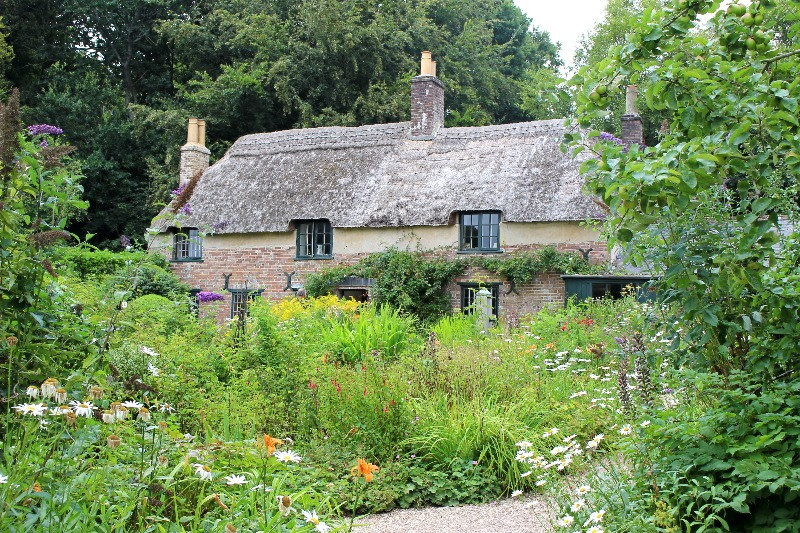 A thatched cottage in a full cottage garden.