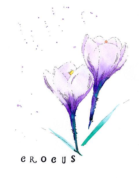 Crocus Greetings Card
