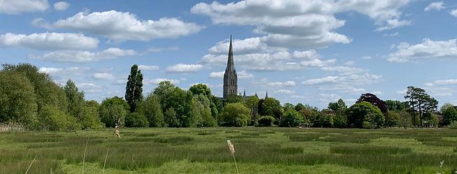 Salisbury%2520May%25202020%2520(456)_edi